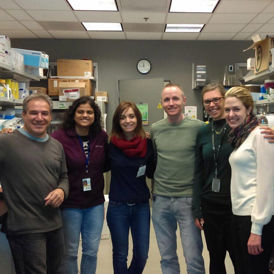 Desarrollo del Silenciamiento Selectivo de Mutaciones como Terapia para las Distrofias Relacionadas con el Colágeno VI